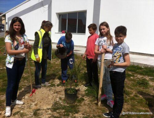 A EB 2,3 de Rio Tinto plantou o FUTURO