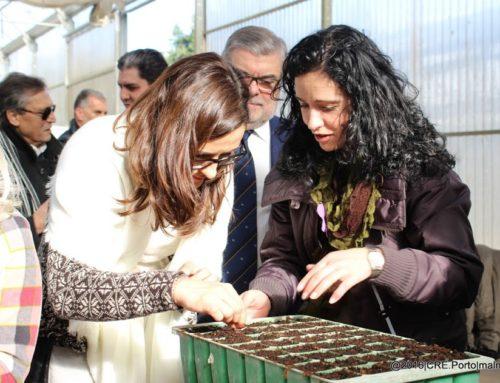 LIPOR e SIRO apoiam a produção de 30.000 árvores nativas no Viveiro do FUTURO