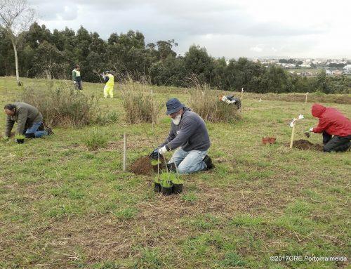 Parque da Ciência de Matosinhos: os trabalhos continuam
