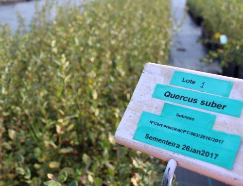 Plantas do FUTURO certificadas pelo ICNF