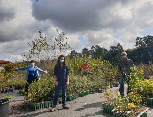 Outubro foi sinónimo de voluntários no Viveiro