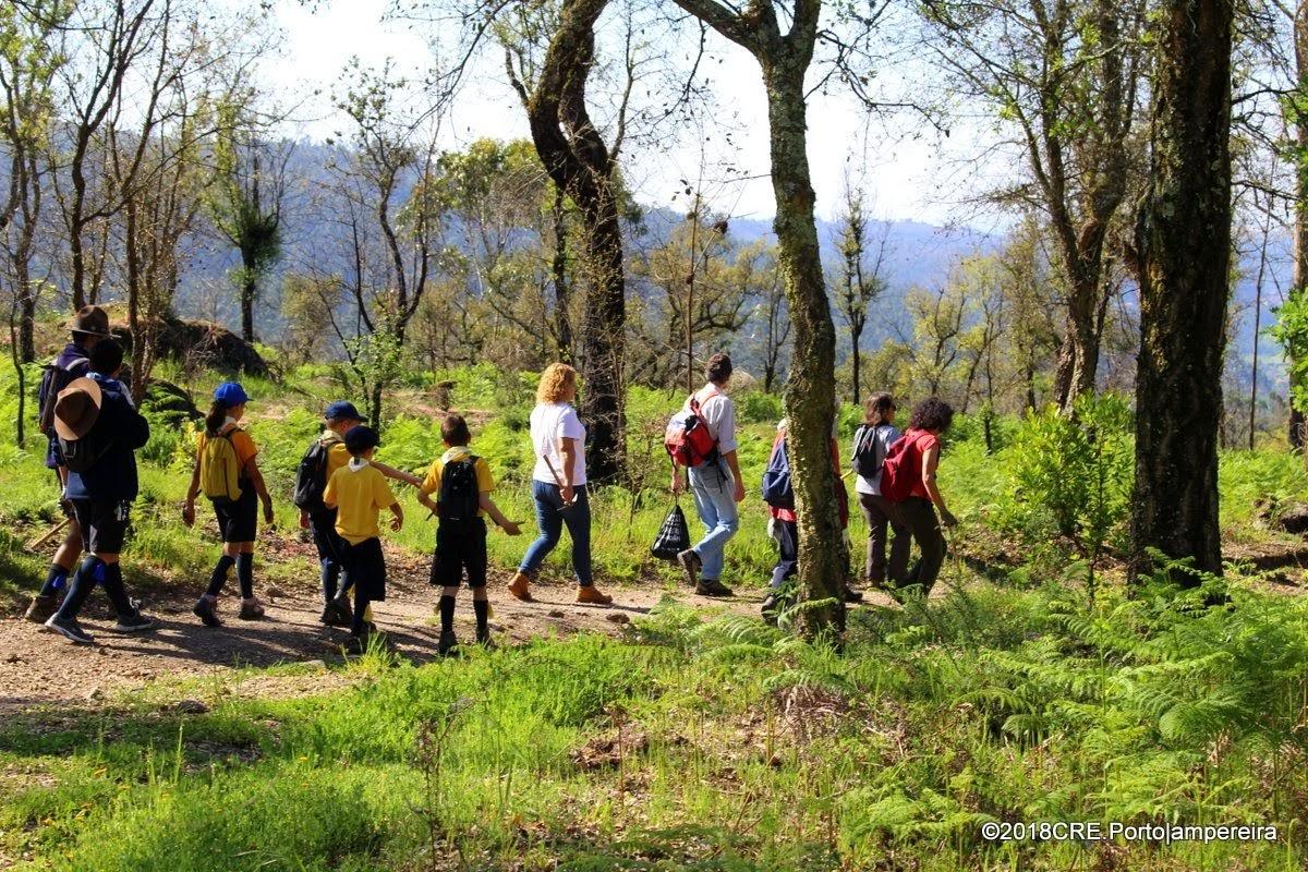 Semana da biodiversidade no Monte Padrão