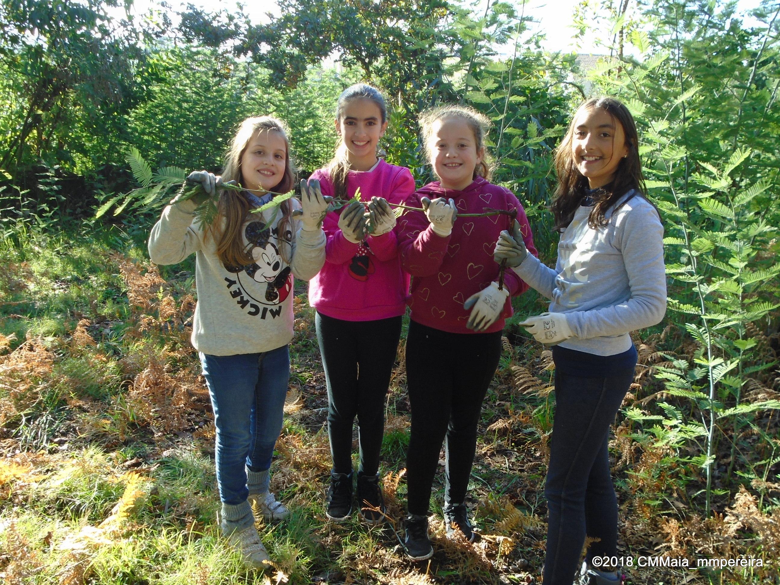 Escola EB1 do Calvário foi (novamente) à floresta