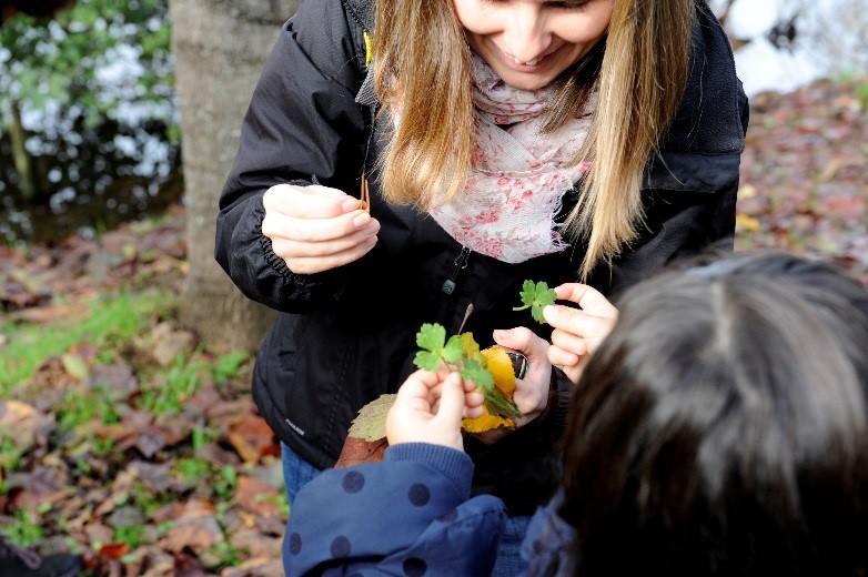 Formação gratuita para professores: educar na Natureza