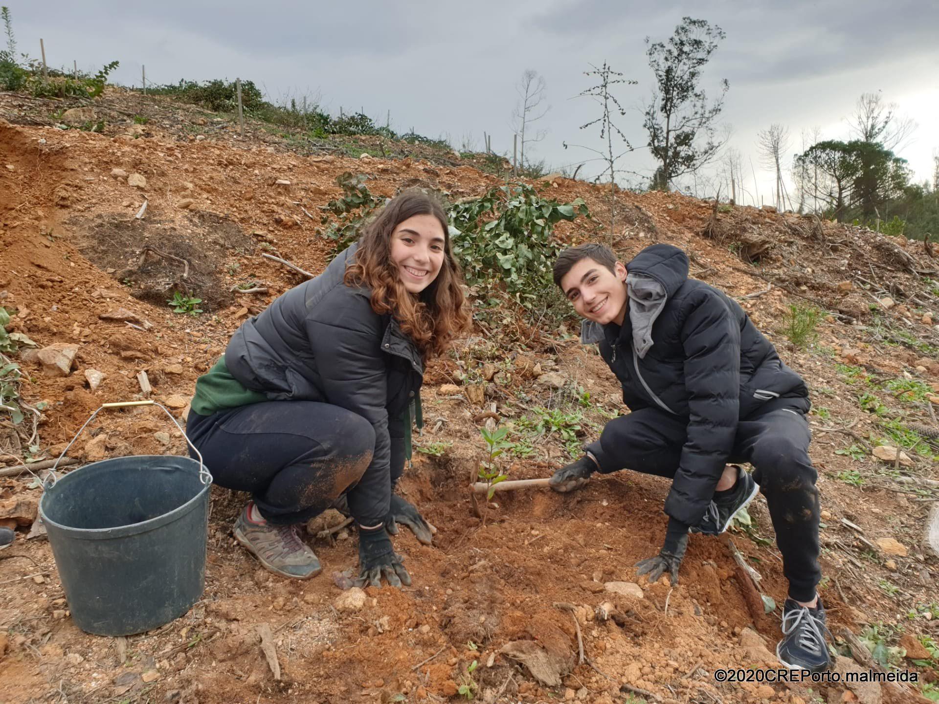 Jovens de Gondomar arregaçam as mangas para plantar um bosque